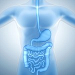Digestive/Gastrointestinal Function Testing